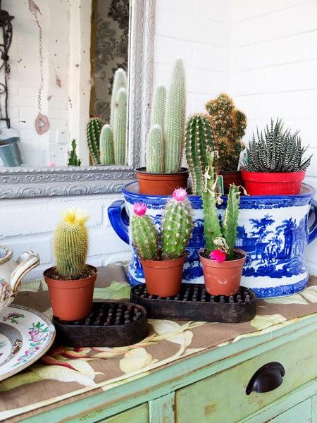 10 ideas para colocar flores en casa hana flowers for Ideas para colgar plantas
