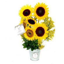 Girasoles con base (AM-6)